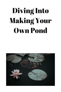 Diving Into Making Your Own Pond