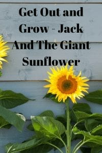 Get Out and Grow - Jack And The Giant Sunflower