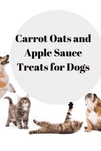 Carrot Oats and Apple Sauce Treats for Dogs