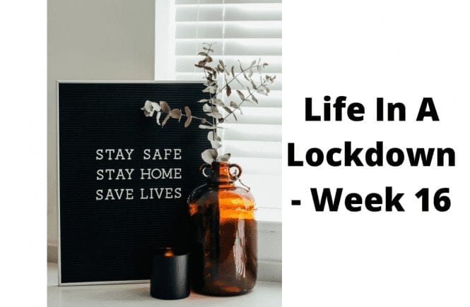 LIFE IN A LOCKDOWN LINKY – WEEK 16