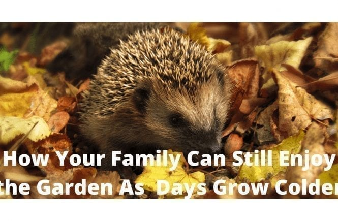 How Your Family Can Still Enjoy the Garden As Days Grow Colder