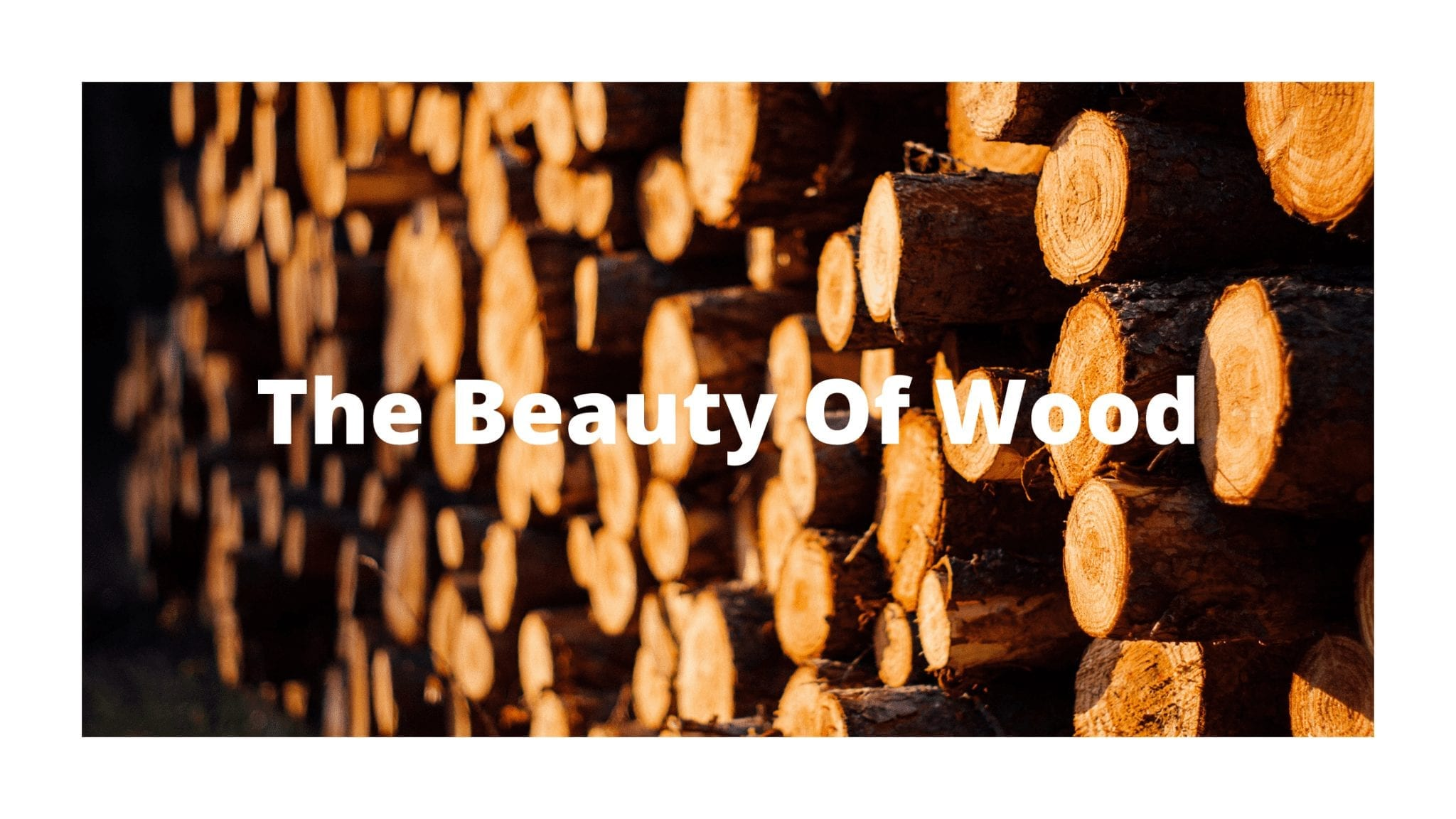 The Beauty Of Wood