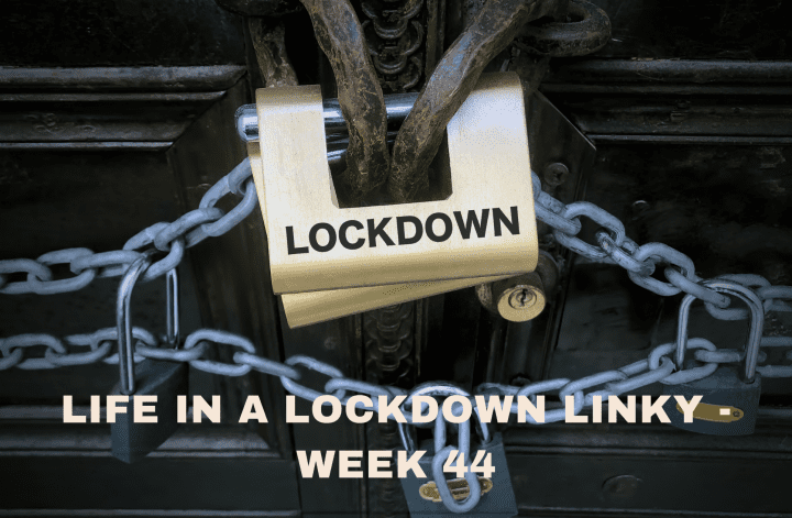 Life In A Lockdown Linky - Week 44