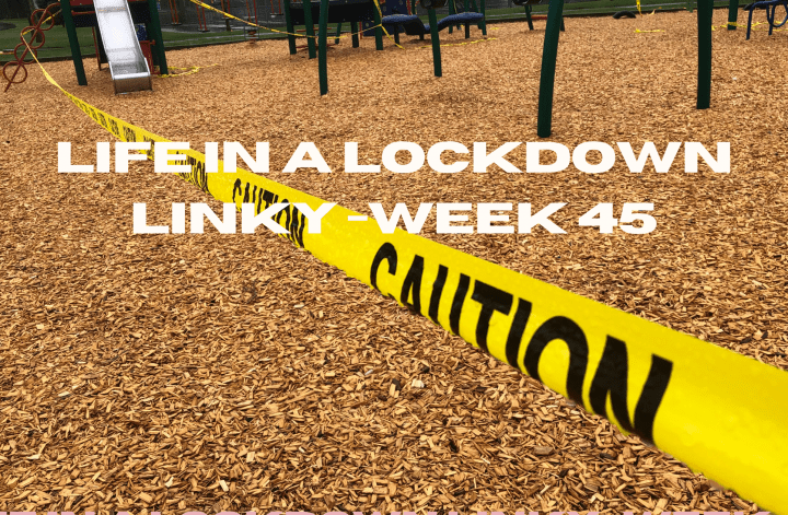 Life In a Lockdown Linky -Week 45