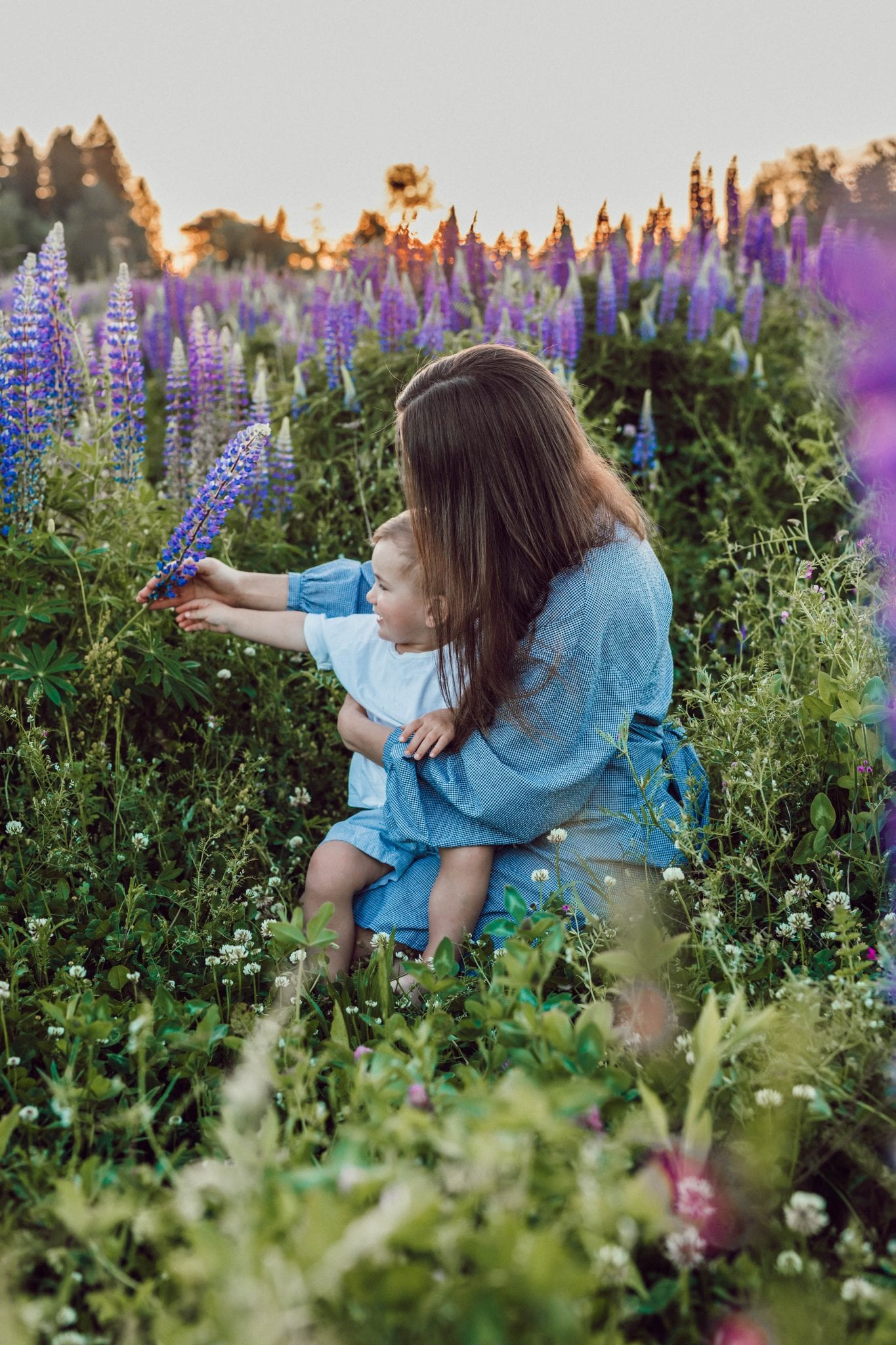 woman sitting with baby on her lap surrounded with purples flower
