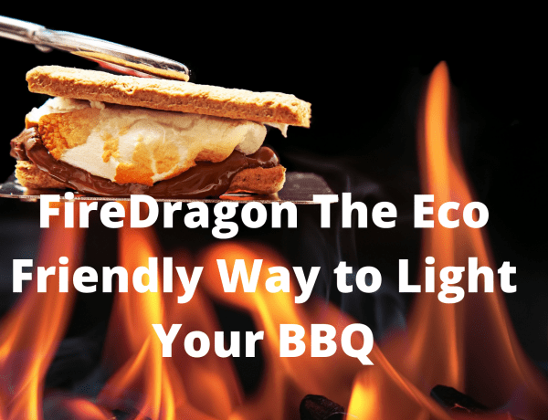 FireDragon The Eco Friendly Way to Light Your BBQ